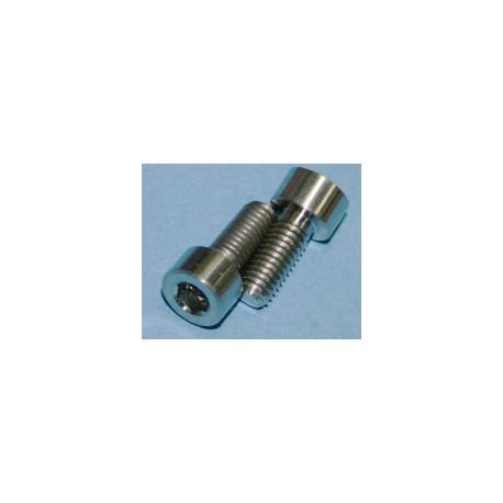 Tornillos de Titanio M5x12mm allen DIN912