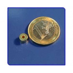 Imán de neodimio Ref. A01Au Anillo Acabado Oro D6D2x2mm Pack 10
